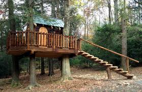 Milroy, PA Rustic Treehouse rustic-landscape