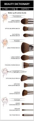 makeup brushes beauty guide