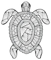 Free Turtle Coloring Pages Turtle Coloring Pages Coloring Pages Of