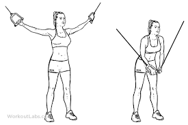 Standing Cable Crossover Fly Illustrated Exercise Guide