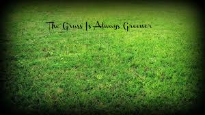 Image result for the grass is always greener