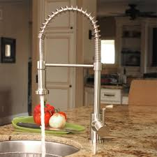 Fontaine LNF RSPK SS Residential Spring Pull Down Kitchen Faucet