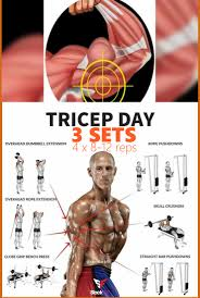 so if you follow these six exercises it won t be long before you have the triceps of a fitness model