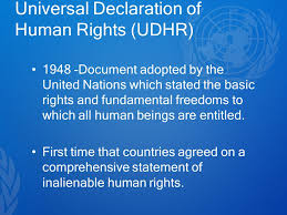 Image result for Human rights are universal