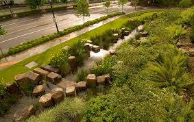 Small Picture Rain Garden at the Oregon Convention Center SERENITY IN THE