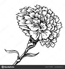 гвоздика тату цветок гвоздика эскиз татуировки векторное