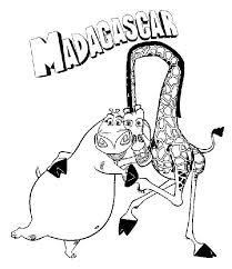 melman and gloria madagascar
