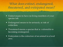 essay presentation 2 what does extinct
