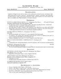 Good Summary For Resume Classy Summary Ideas For Resume Resume Summary Vs Objective Summary