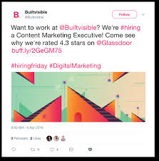 19 hiring announcements and new team members