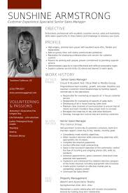 Senior Sales Manager Resume Samples Visualcv Resume Samples Database