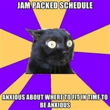 Memes: Anxiety Cat on Pinterest | Anxiety Cat, Anxiety Cat Meme ... via Relatably.com