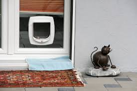cat flap fitting in glass bedfordshire