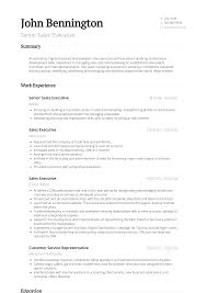Senior Sales Executive Resume Samples Templates Visualcv