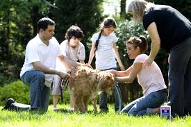 Image result for dog family