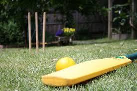 Backyard Cricket Set  Outdoor GoodsBackyard Cricket Set