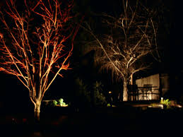 led low voltage landscape lighting kit awesome lighting home depot low voltage outdoor lighting kits paa
