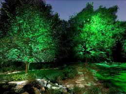 tree lighting ideas. 22 landscape lighting ideas tree