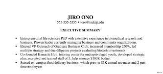 Resume Executive Summary Example Executive Summary Resume Example Resume Sample Executive Summary 10