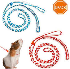 PAWCHIE 2Pcs Small Animal Harness Leash ... - Amazon.com