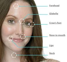 face anatomy anatomy of skin on face professional treatment specialist