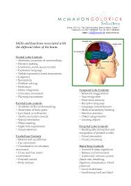 clip art lobes of the brain and their functions skills and clip art lobes of the brain and their functions skills and functions associated the different lobes of the repinned by drbrunogallo