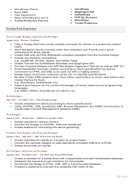 web developer resume doc