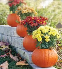 Fall Gardening In McKinney Itu0027s Time  Get McKinneyFall Gardening