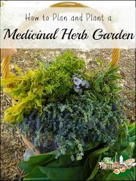 how to plan a garden. How To Plan And Plant A Medicinal Herb Garden L DIY Health Homestead Lady ( E