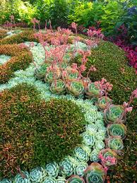 Small Picture 182 best Succulent garden designs images on Pinterest Succulents