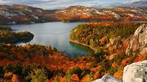 Get Autumn Colors - Microsoft Store