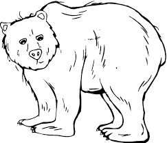 Small Picture Grizzly Bear coloring Free Animal coloring pages sheets Grizzly Bear