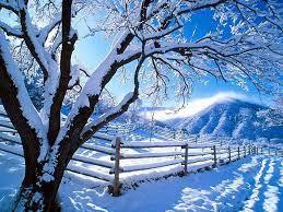 Christmas Wallpaper - winter wallpapers ...