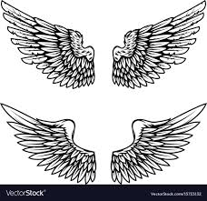 Wing Design Vintage Wings Isolated On White Background Design