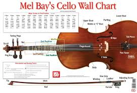 Cello Notes Chart Amazon Com Cello Wall Chart 0796279113052 Martin
