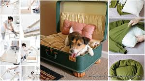 dog bed ideas.  Dog 29 Epic DIY Dog Bed Ideas For Your Furry Friend Throughout Homesthetics