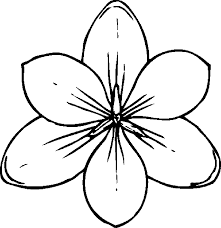 Print & Download - coloring pages for adults flowers -