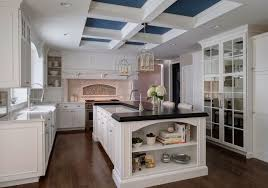 chicago kitchen design. Fantastical Kitchen Design Chicago Large Contemporary Wins NKBA Best Of Show On Home .