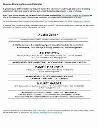 Leadership Resume Statements New Resume Impact Statement Examples