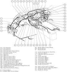 2007 toyota fj cruiser fuse box diagram wiring amp engine diagram 2007 toyota fj cruiser fuse box diagram wiring amp engine diagram toyota rav4