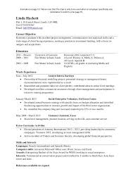 One Page Resume Example Cool One Page Resume Examples 48 Goal Goodwinmetals Co Correiodigital