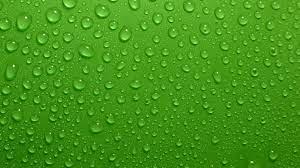 Green Colour Background Wallpaper HD ...