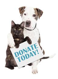 animal shelter donate. Plain Donate Cat  And Animal Shelter Donate E
