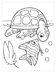 234+ trang tô màu con rùa siêu dễ thương cho bé tập tô màu - Tranh Tô Màu  cho bé