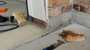cozy review garage door rodent guard
