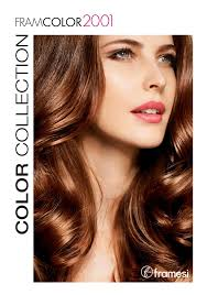 Framcolor 2001 Collection Folder Professional Hairstyles
