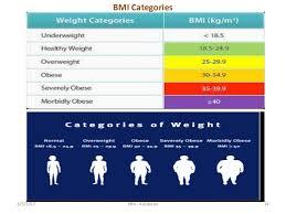 Bmi Categories Body Mass Index