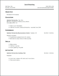 First Time Resume Templates Stunning First Time Job Resume First Job Resume Examples First Job Resume