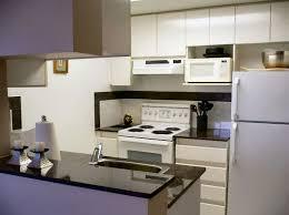 Apartment Kitchen Design Simple Inspiration Ideas