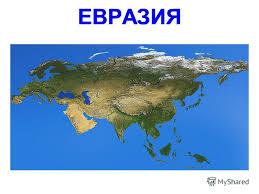 Презентация на тему Растения и животные Евразии Презентацию  ЕВРАЗИЯ